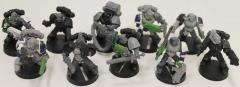 Space Wolf Tactical Squad #2