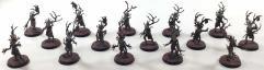 Sylvaneth Dryads #1