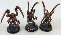 Lictor Collection #4