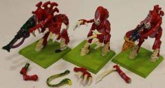 Tyranid Warriors Collection #4