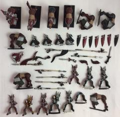Dragon Princes of Caledor Collection #10
