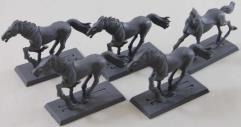 Wild Rider Horse Collection #1