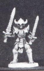 Chaotic Swordsman