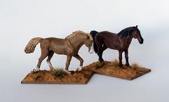 Unbridled Horses