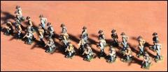 Confederate Dismounted Cavalry