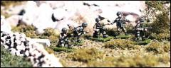 Fallschirmjager Individual Infantry