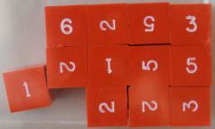 d6 Orange w/White Ink (12)