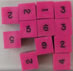 d6 Pink w/Black Ink (12)