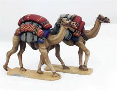 Baggage Camels