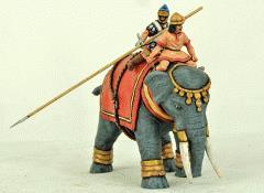Successor Elephant - Barebacked w/Upright Crew