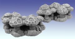 Shaman's Fungi