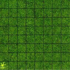 """Grass (1"""" Squares) (Free RPG Day 2014)"""