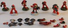 Blood Angels Collection #1