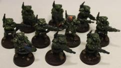 Cadian Shock Troops Collection #25