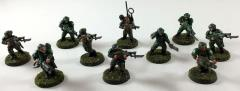 Cadian Shock Troops Collection #66