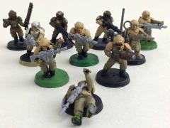 Cadian Shock Troops Collection #86