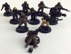 Cadian Shock Troops Collection #87