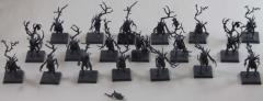 Dryads Collection #5