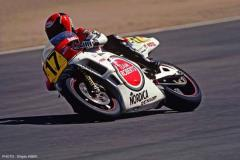Yamaha YZR500 - Team Roberts 1988 (Limited Edition)