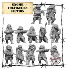 Gnome Voltigeurs Section