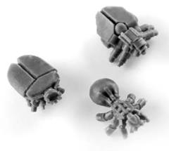 Tomb Scarabs