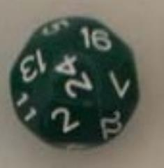 D24 Green w/White