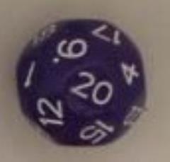 D24 Purple w/White