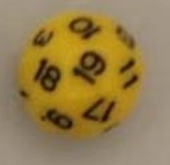 D24 Yellow w/Black