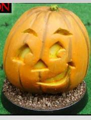 Giant Pumpkin - Side Look