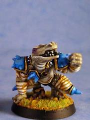 Sobek Defender #2
