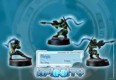 Ninja w/Sniper Rifle