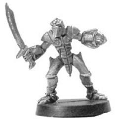 Elf Thorn Warrior
