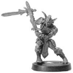 Elf Sword Master