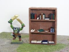 Bookcase w/Books Set