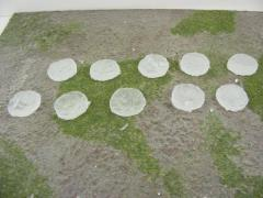 25mm Round - Ice Bases
