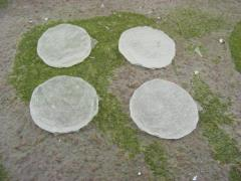 40mm Round - Ice Bases