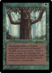 Ironroot Treefolk (German) (C)