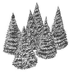 "3"" Pine Tree"
