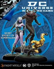 Secret Society of Supervillain (Multiverse)
