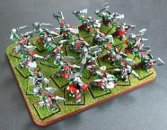 Skirmish Tray - 20 Figures, 20mm Square Bases