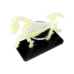 50x25mm Base - Skeletal Steed/Character Mount - Ivory