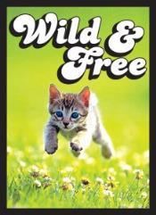 Standard CCG Size - Kitten, Wild & Free (50)