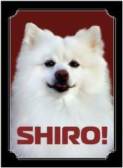 Standard CCG Size - Shiro (50)