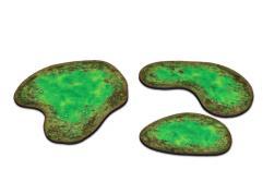 Toxic Pond