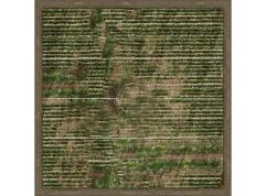 "36"" X 36"" Playmat - Farmers"