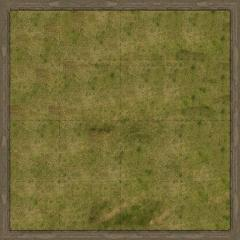 "36"" x 36"" Playmat - Grassland of Malifaux (Cloth)"