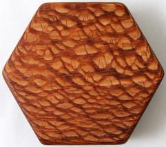 Lacewood - Beehive, Blank