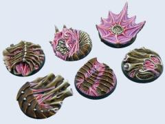 40mm Hive - Round Bases