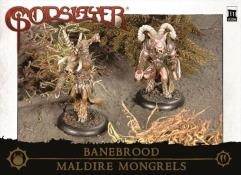 Maldire Mongrels - Trooper Box