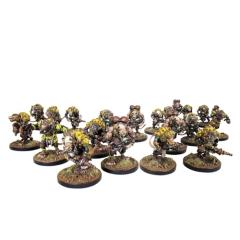 Night-Crawlers Platoon